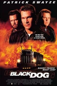 Black Dog (1998) ไอ้หมาบ้าผ่าไฮเวย์นรก