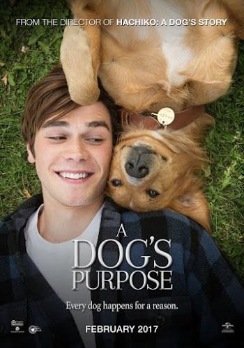 A Dog's Purpose (2017) หมา เป้าหมาย และเด็กชายของผม [ซับไทย]