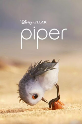 Piper (2016) แอนิเมชั่นสั้น ฉายปะหน้า Finding Dory