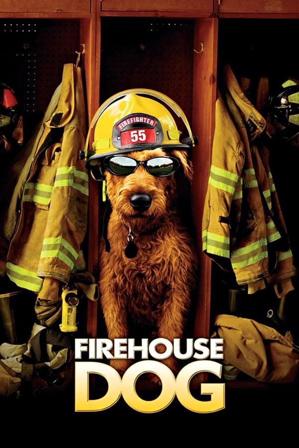 Firehouse Dog (2007) ยอดคุณตูบ ฮีโร่นักดับเพลิง