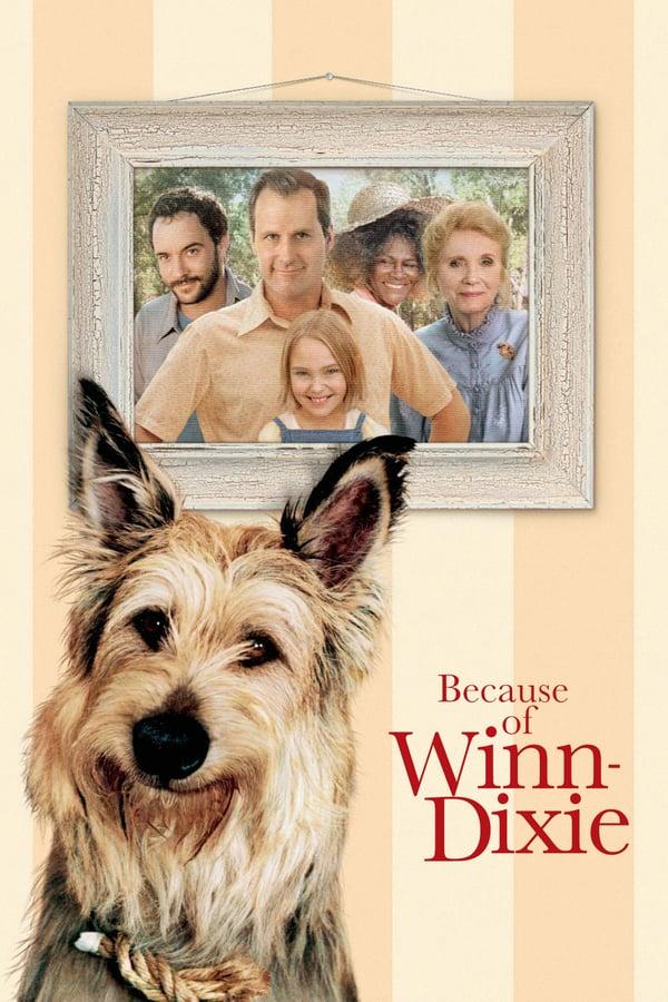 Because of Winn Dixie (2005) วินน์ ดิ๊กซี่ เพื่อนแท้พันธุ์ตูบ