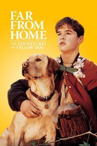 Far from Home The Adventures of Yellow Dog (1995) เพื่อนรักแสนรู้