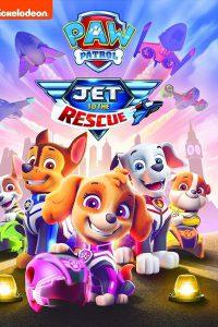 Paw Patrol Jet to the Rescue (2020)