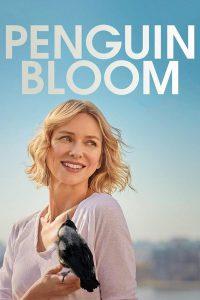 Penguin Bloom (2020) เพนกวิน บลูม (Netflix)